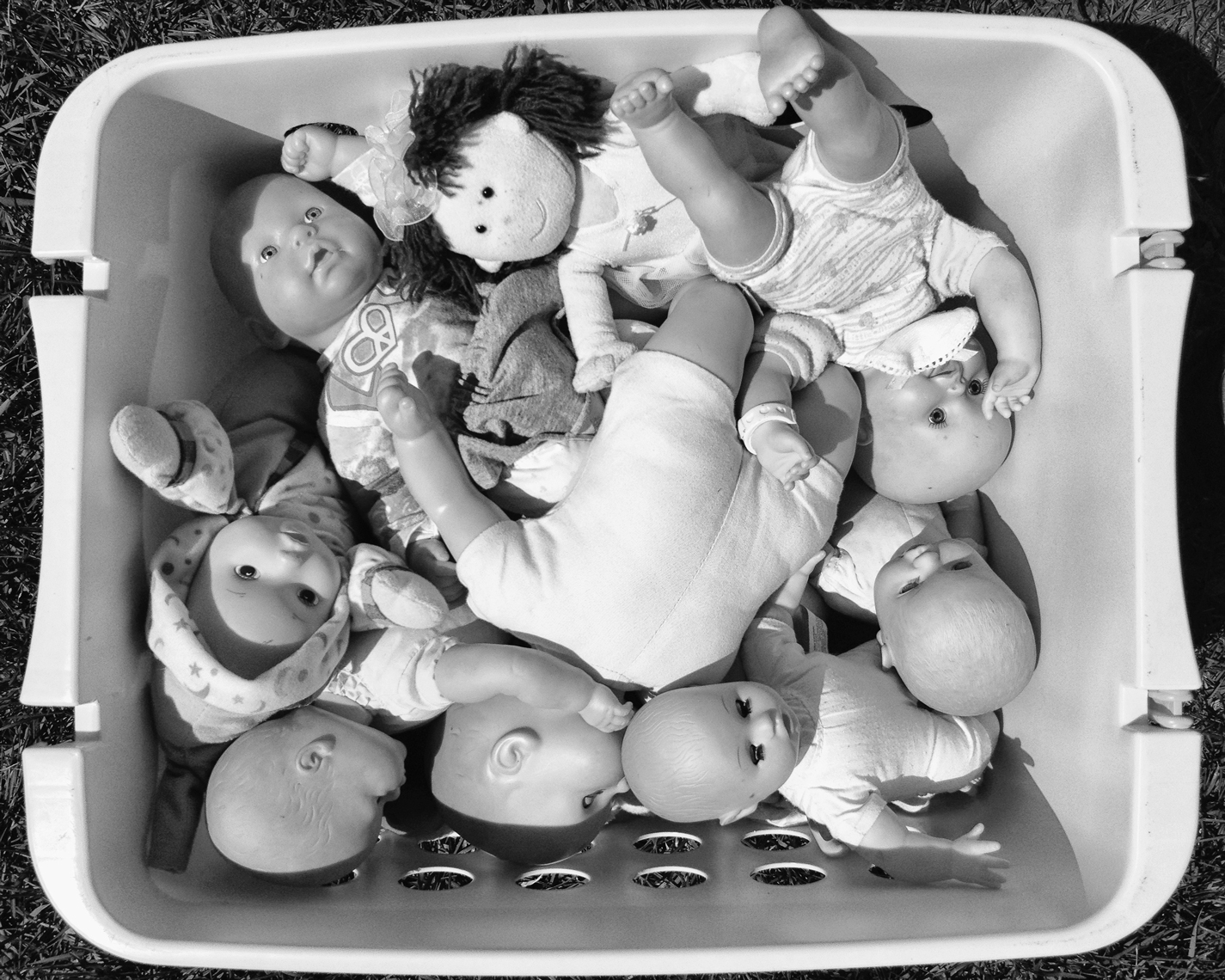 BASKET_OF_BABIES_7549